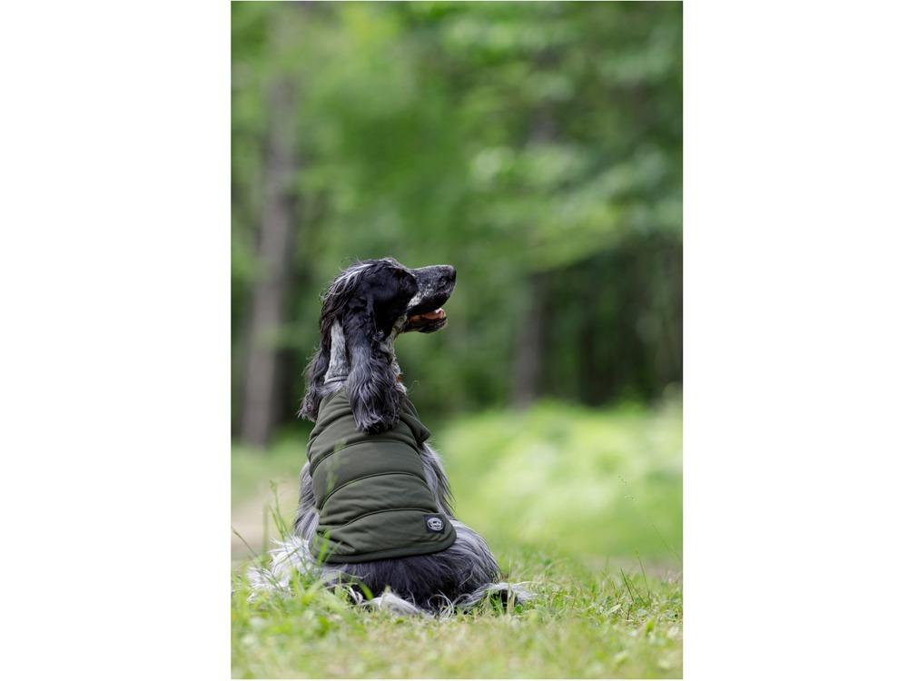 SP Dog Flexible Insulation M Mossgreen