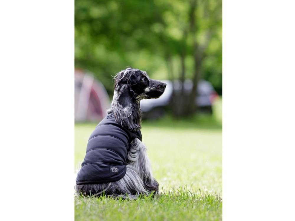 SP Dog Flexible Insulation M Black