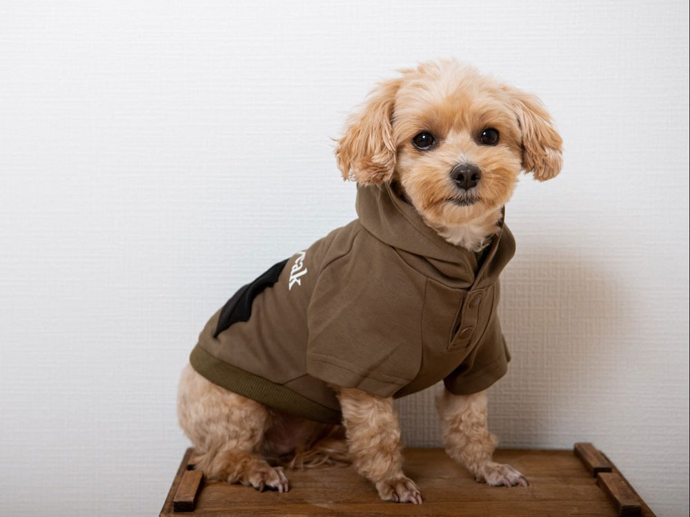 SP Dog Parka S Land Breeze