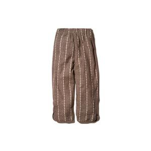 Wild Silk Striped Pants